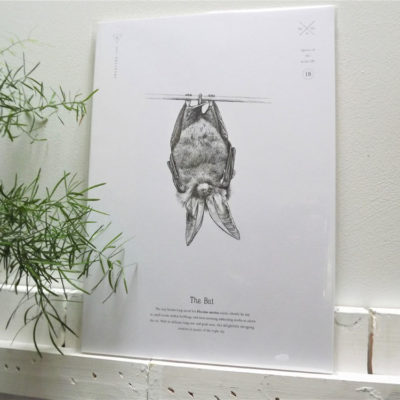 Bat Print by Creature Candy