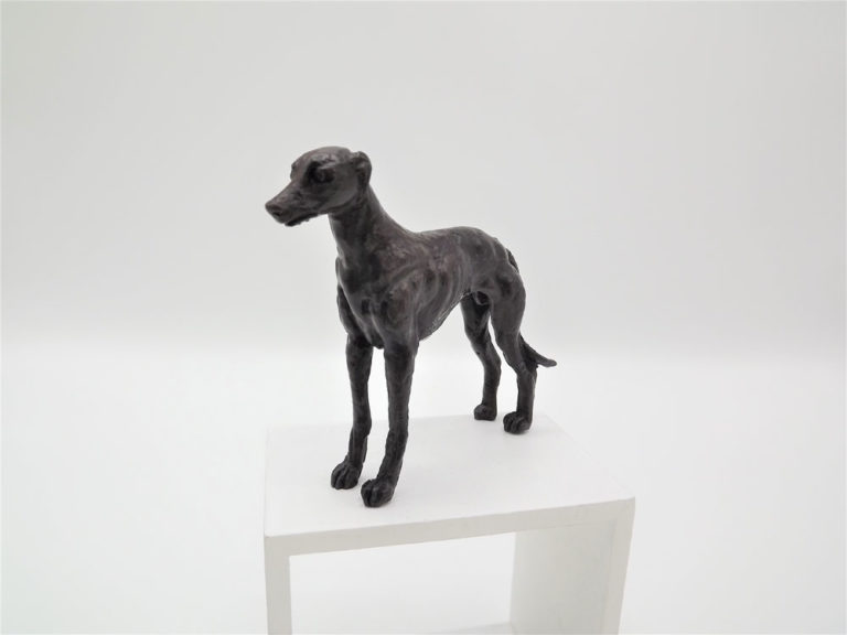 Standing Greyhound by Muhmood Tahir