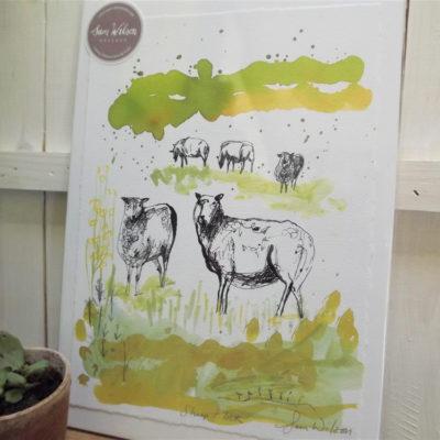'Sheep Flock'