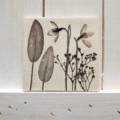 Snowdrop Ellul Ceramic Tile