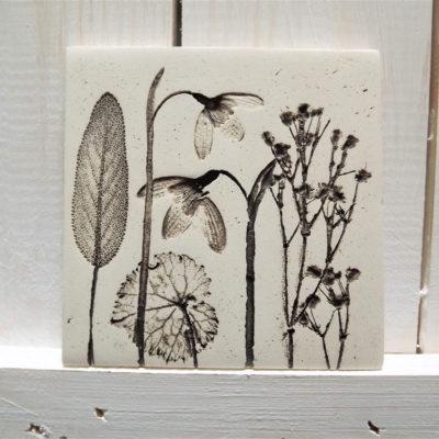 Snowdrop Natural Ellul Ceramic Tile