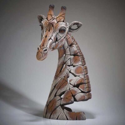 Giraffe Bust by Matt Buckley