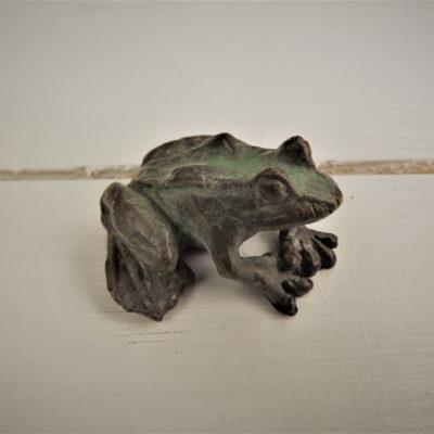 Frog Crouching