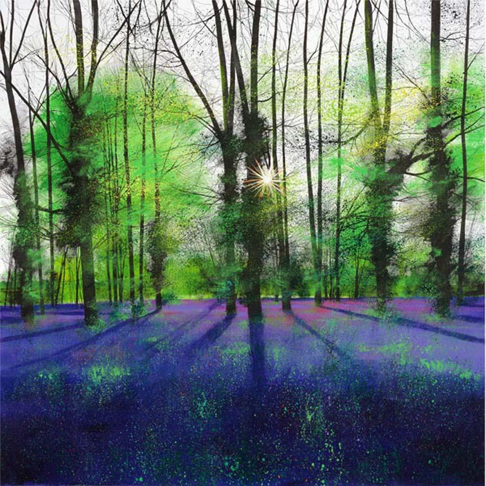 Sunburst and Bluebells by Paul Evans