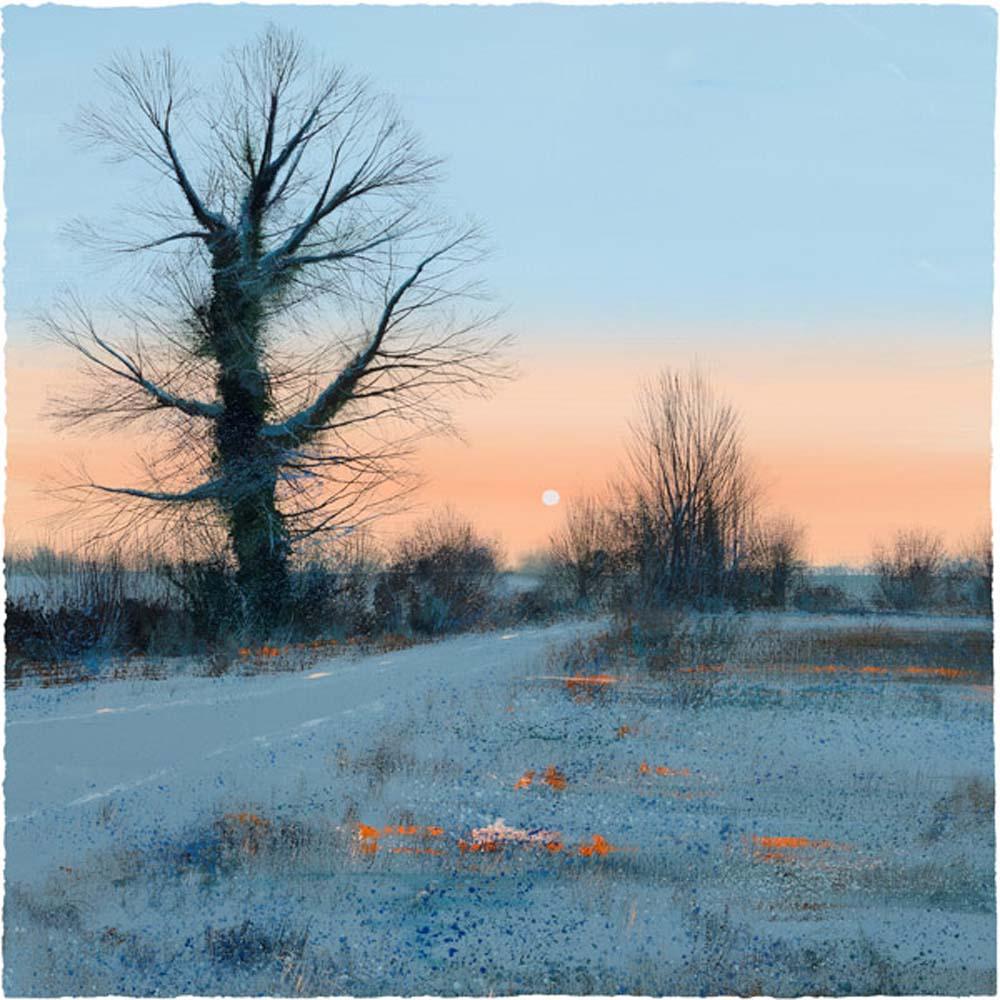 Winter Sunrise by Paul Evans
