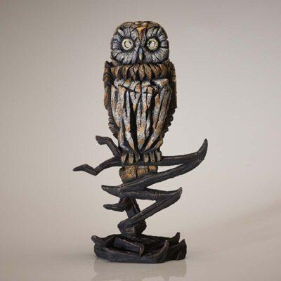 Tawny Owl by Matt Buckley