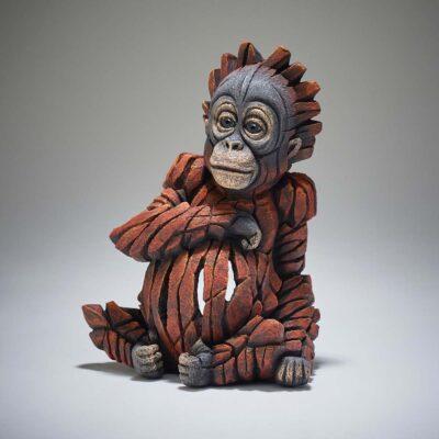 Baby Orangutan by Matt Buckley