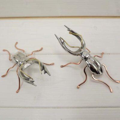 Stag Beetle by Jim Stringer